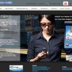 第3回:「オバマキャンペーン」をマーケティングの観点から分析する(3):日経ビジネスオンライン
