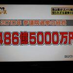 2010年参議院選挙の経費 約486億5000万円
