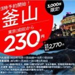LCCで片道230円で韓国・釜山に行くにはかなり忙しい…デフォルトのチャージはなんとかならないのだろうか?