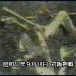野球イノベーター長嶋茂雄