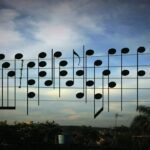 Birds on The Wires 鳥がおりなす偶然の音楽?