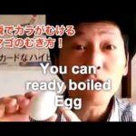 【料理】ゆで卵のカラを一瞬でむく方法!