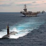 日本にイルカやクジラを…という前にこっちも考えるべきだろう…米海軍の訓練やソナー実験
