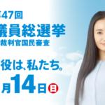 総務省は、仲間由紀恵さんをキャンペーンするよりも候補者をキャンペーンすべきだろう