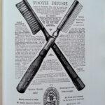 1498年の大発明「歯ブラシ」:歯磨きの歴史