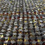 ハーバード大MBAの3割はプログラマー