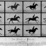 リーランド・スタンフォードの馬の賭け話しから、映画産業が生まれた