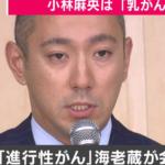 小林麻央さんの病名は乳がん.市川海老蔵さん発表