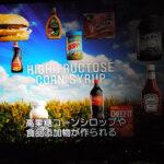 今まで、コーンシロップ、抗生剤、人口保存料を食べさせていたのか?米マクドナルドが原料見直し、ナゲットも人工保存料の使用中止