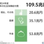 フェルドマン氏、2012年日本の社会保障費125兆円と推計。財務相データは109.5兆円 その差は15.5兆円